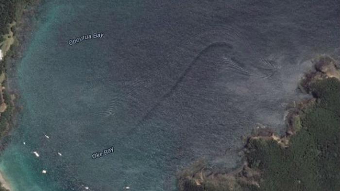 Makhluk Laut Misterius Raksasa Terlihat  di Google Earth Oke Bay