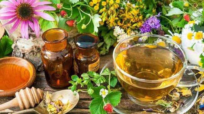 Ramuan Mujarab Segarkan Sel-sel Tubuh, Intip Resep dr Zaidul Akbar, Buat Sendiri Minuman Herbal Ini