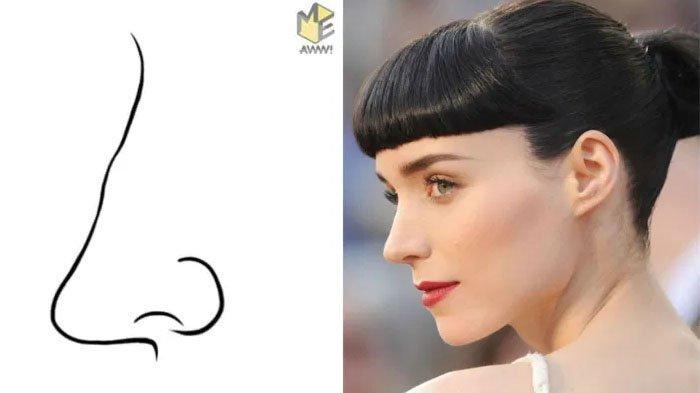 8 Bentuk Hidung Ini Bisa Cerminkan Kepribadian, Berfirasat Kuat hingga yang Tak Bisa Kena Hasutan