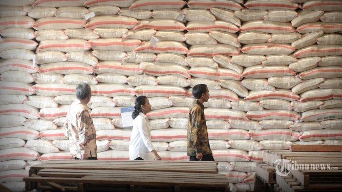 Petani NTB Gigit Jari Diterpa Isu Impor Beras yang Mencuat : Kenapa Harus Impor? Kita Panen Raya