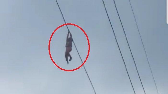 Kronologi Bocah Bergelayut di Kabel Sutet Setinggi 15 Meter, PLN Minta Maaf, Cara Selamatkan Diri