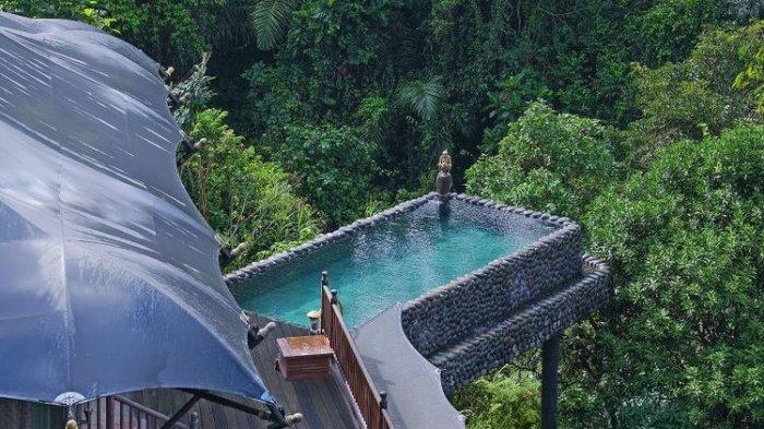 MEWAHNYA Capella Ubud, Hotel Terbaik Dunia Ada di Bali, Lihat Deretan Fasilitasnya, Bak Surga Dunia