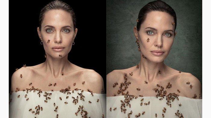 Pengorbanan Angelina Jolie di Balik Foto Dikerumuni Lebah, Rela Tak Mandi 3 Hari dan Diam 18 Menit