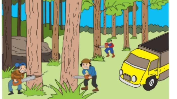 KUNCI JAWABAN Tema 3 Kelas 3 SD Subtema 2 Hal 15 16 17 18, Cara Mengatasi Penebangan Hutan Liar