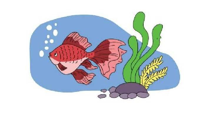 SOAL & KUNCI JAWABAN Tema 1 Kelas 3 SD Subtema 3 Halaman 118-122, Sebutkan Berbagai Jenis Ikan