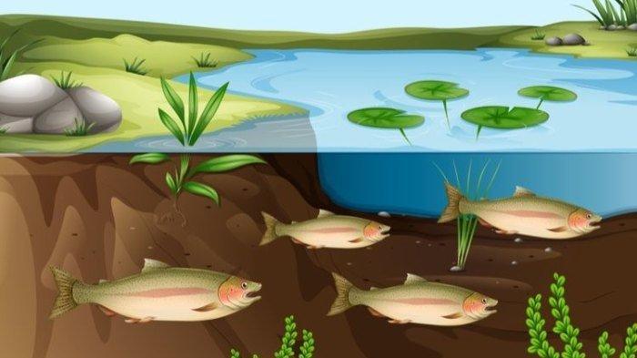 Ilustrasi ekosistem bawah tanah