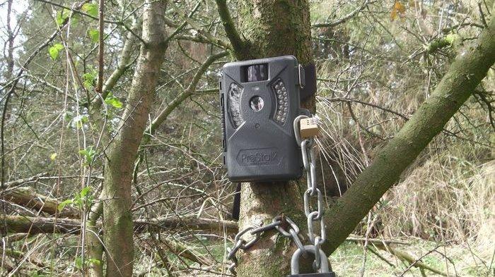 Warga Sumbar Ngaku Bertemu Makhluk Misterius: Bau Busuk & Berbulu Lebat, Petugas Pasang Kamera Trap