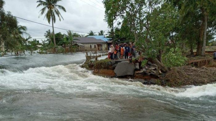 Banjir di Kalimantan Selatan, Evaluasi Izin Perkebunan, Hutan Primer Berkurang, Tanggapan Pemerintah