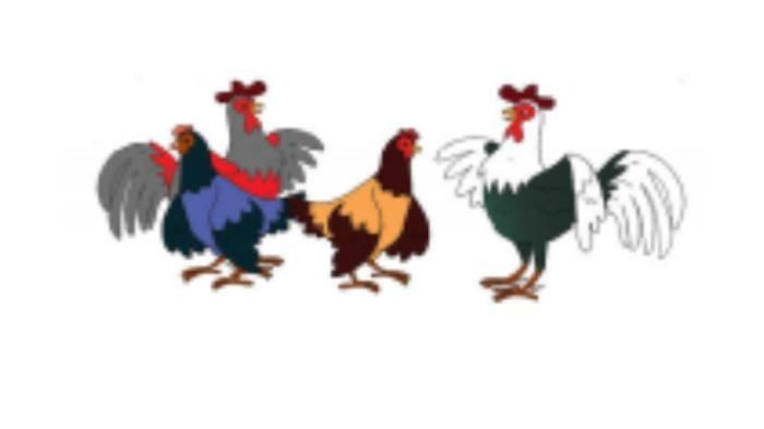 KUNCI JAWABAN Tema 7 Kelas 2 SD Hal 155-163, Seekor Ayam di Gambar Ini Dinyatakan dengan Pecahan?