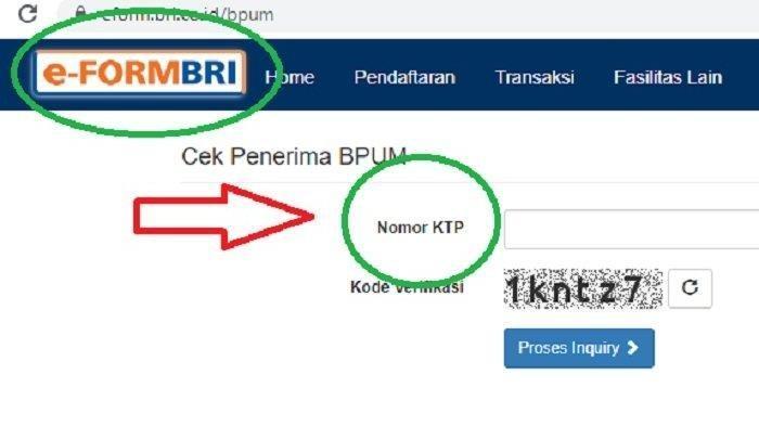 PANDUAN Mengecek Penerima Bantuan BPUM BLT UMKM Rp 1,2 Juta Via Online Bank BRI & BNI
