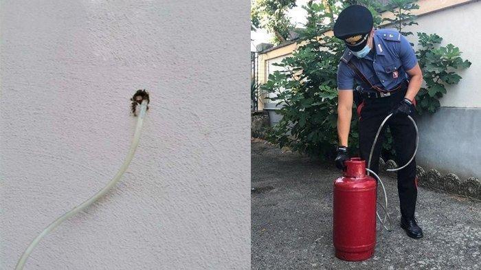 CURIGA Ada Bau Aneh, Pria Ini Temukan Lubang di Dinding Rumah, Kelakuan Jahat Tetangga Terungkap