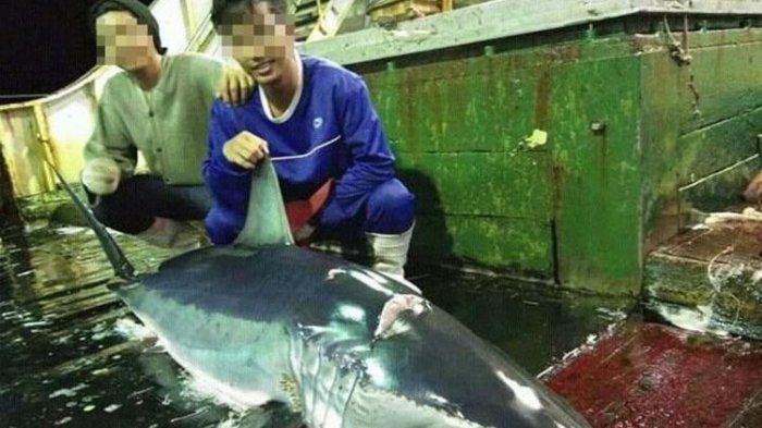 Anggota ABK Kapal China Beberkan Perlakuan Keji yang Dialami, Harus Minum Air Laut & Kerap Ditendang