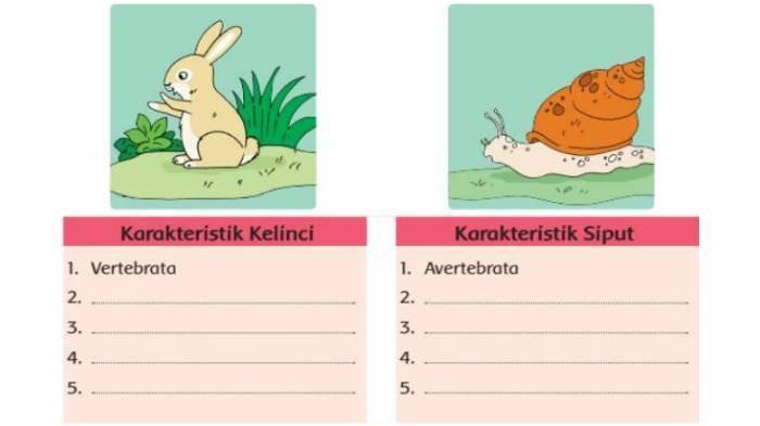 KUNCI JAWABAN Lengkap dari Soal Tema 1 Kelas 5 Hal 42-43, Organ Gerak Hewan, Vertebrata & Averbrata