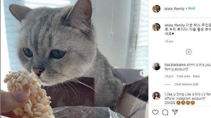 Postingan pertama akun Instagram hewan peliharaan Lisa BLACKPINK