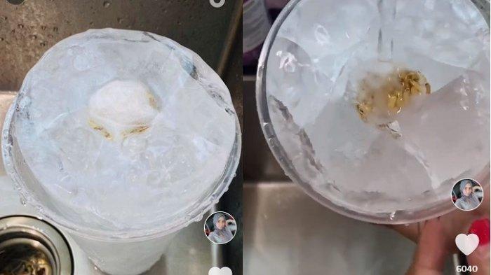 SEUSAI Viral Kalung di Perut Ikan, Kini Istri Temukan Emas di Dalam Es, Sontak Nangis Tahu Faktanya