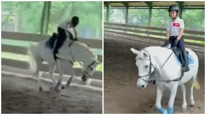 Rafathar anak Raffi Ahmad dan Nagita Slavina yang terjatuh dari kuda, Foto Instagram raffinagita1717