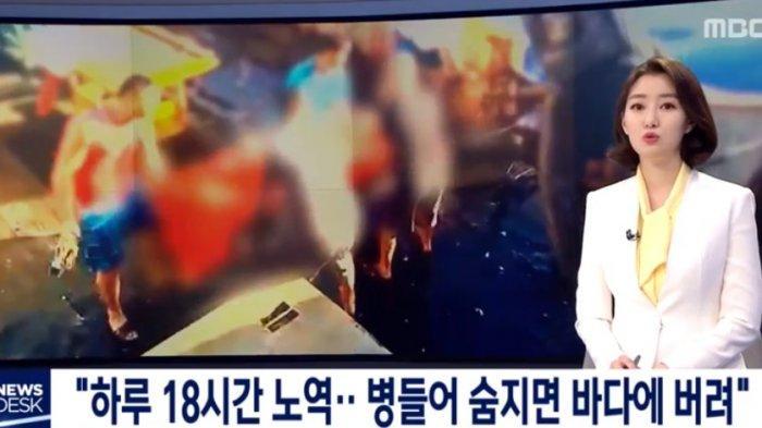 Sampai Trending di Korea, ABK Indonesia Dieksploitasi Parah di Kapal China, 3 Mayat Dibuang ke Laut