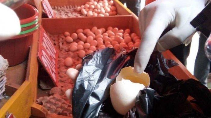 Heboh Telur Infertil Dijual di Pasar, Apakah Berbahaya Jika Dikonsumsi? Ini Penjelasannya