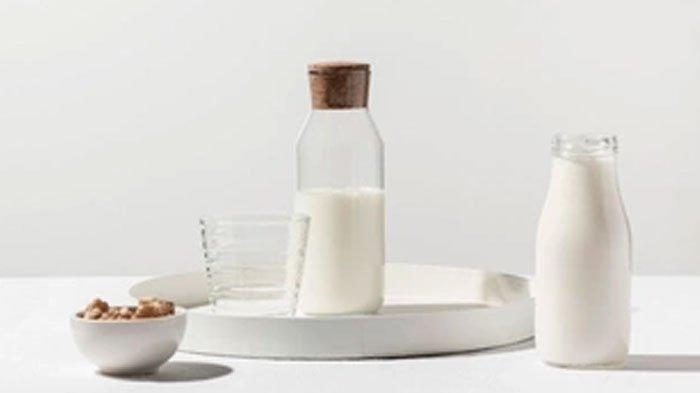 Minum Susu Beruang Dicampur Madu & Telur Dipercaya Miliki Banyak Khasiat, Bagaimana Aturannya?