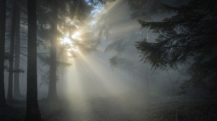 Tafsir & Arti Mimpi Melihat Cahaya Terang, Cahaya di Dalam ...