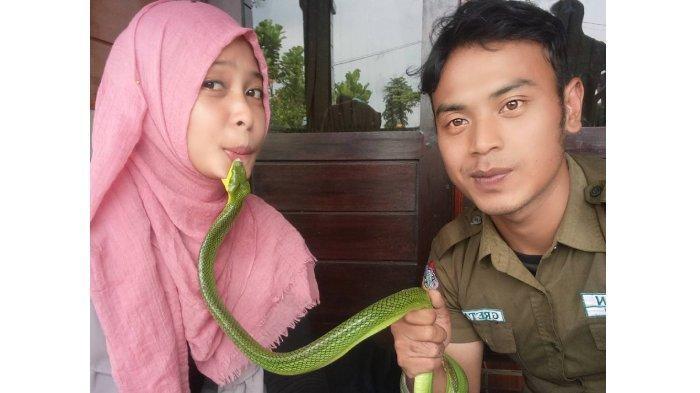 Viral foto wanita dagunya digigit ular