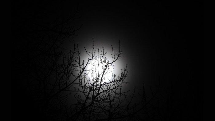 Akhir Februari 2021 Ada Bulan Purnama, 3 Zodiak Terdampak Hal Negatif: Aquarius Dirundung Kecemasan