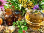 bahan-bahan-herbal.jpg