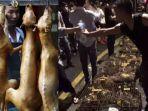 china-festival-anjing.jpg