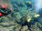para-penyelam-bebas-amatir-menemukan-banyak-koleksi-koin-emas-romawi-di-lepas-pantai-spanyol.jpg