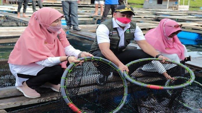 Hampir Setahun Vakum karena Pandemi Covid-19, Sumbar Ekspor 20 Ton Ikan Kerapu ke Hongkong