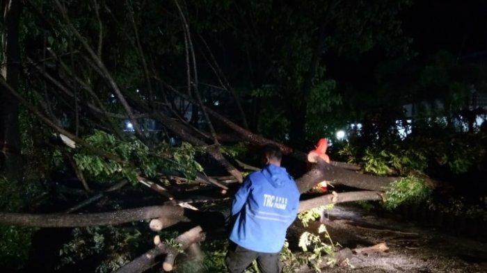 Angin Kencang Landa Sumbar,BMKG Imbau Masyarakat Waspadai Potensi Hujan Lebat dan Cuaca Ekstrem