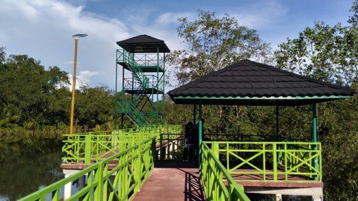 Apar Pariaman Mangrove Park, Spot Liburan di Pariaman, Suguhkan Wahana Berjalan Kaki di Atas Rawa