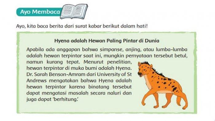 Perbedaan Hyena dengan Hewan Lainnya Dalam Mengatasi Masalah