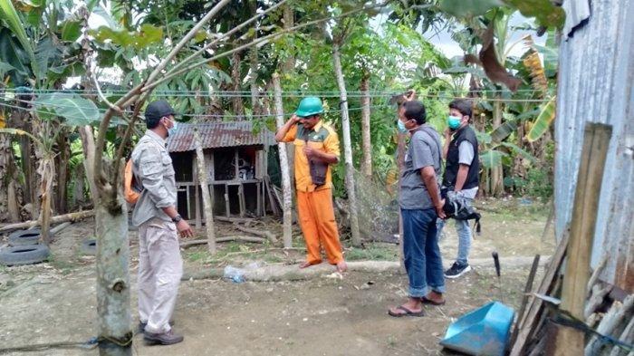 BKSDA Agam datangi lokasi yang sering terlihat kemunculan buaya, di komplek Somel, Jorong Ujuang Labuang, Nagari Tiku V Jorong, Kecamatan Tanjung Mutiara, Kabupaten Agam, Selasa (3/5/2021).