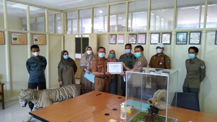 Warga di Sumbar Serahkan Opsetan Harimau dan Cenderawasih, BKSDA Sumbar: Sukarela dan Sudah Sadar