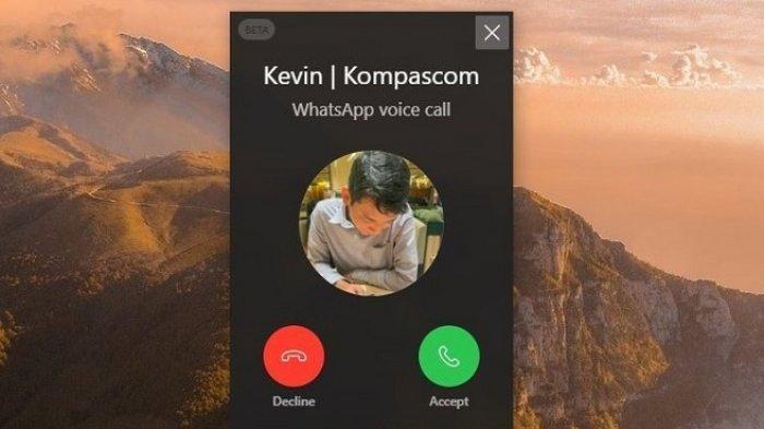 Cara Video Call WhatsApp Web di Laptop dan Komputer, Perhatikan 2 Ikon Baru yang Muncul