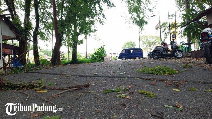 Angin Kencang Melanda Kota Padang, BPBD: Waspada Pohon Tumbang