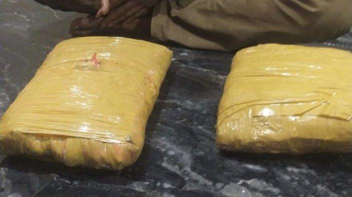 2 Paket Besar Ganja Disita dari Tangan Seorang Pria di Pesisir Selatan, Ditemukan di Kamar Mandi
