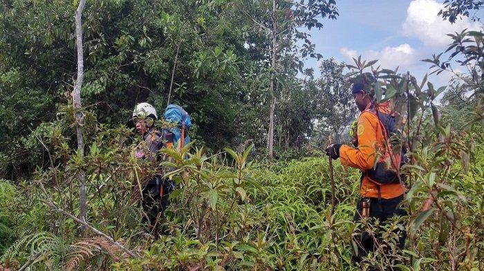 Pencarian Warga Kepulauan Riau di Hutan Limapuluh Kota Dihentikan, Robi Saputra: Kami Tetap Monitor