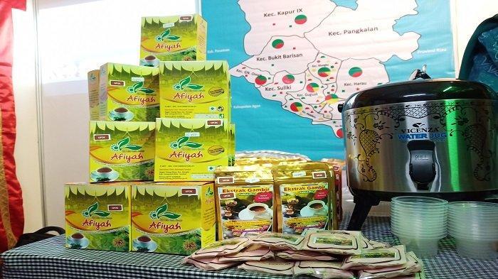 Harga Getah Gambir Anjlok, Masyarakat Diimbau Hasilkan Produk Jadi Gambir