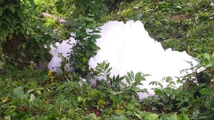 VIRAL Gelembung Busa Muncul di Sijunjung, Ini Penjelasan Dinas Lingkungan Hidup Sumbar