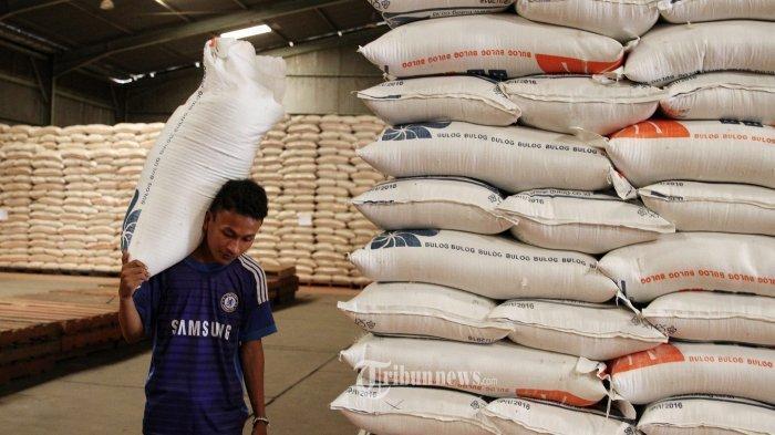 Kebutuhan Beras di Padang 9 Ribu Ton Per Bulan, Dinas Pangan Perkirakan Meningkat saat Ramadhan