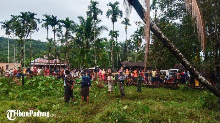 Adi Sebut Hewan Ternaknya Lagi Bunting, Mati Diterkam Harimau di Padang Pariaman
