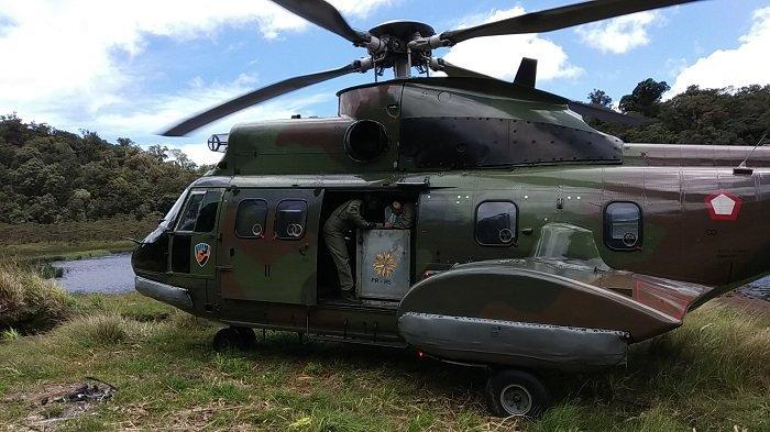 Harimau Sumatera Ciuniang Nurantih Dilepasliarkan ke Kawasan TNKS, Diangkut Pakai Helikopter