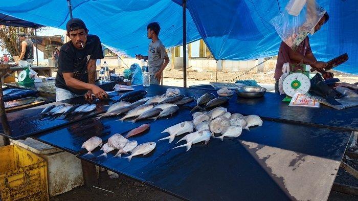 Harga Ikan di Padang Mengalami Kenaikan, Nelayan Khawatirkan Cuaca Buruk Hendak Melaut