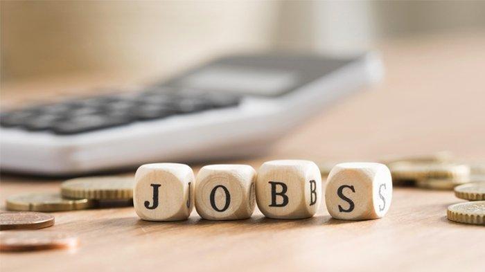 Daftar Lowongan Pekerjaan di Bulan Juli 2020, Ada Posisi Programmer Gaji Rp 7 Juta Per Bulan