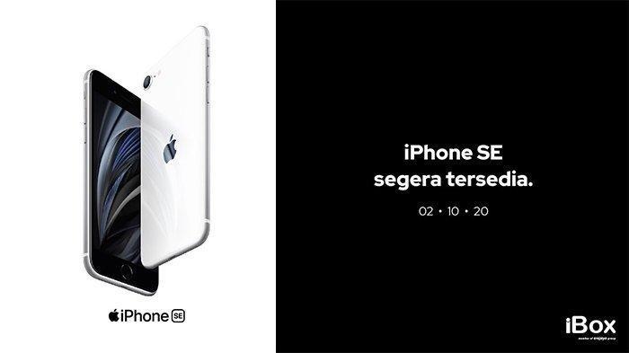 Cek! Harga dan Spesifikasi iPhone SE Generasi ke-2 di Indonesia, Buka Mulai 2 Oktober 2020