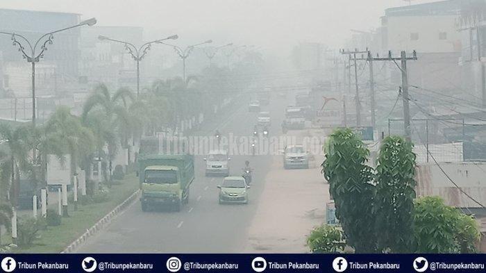 Bayi Usia 22 Bulan Sesak Nafas Akibat Kabut Asap di Riau, Dania: Saya Hanya Bisa Menangis dan Berdoa