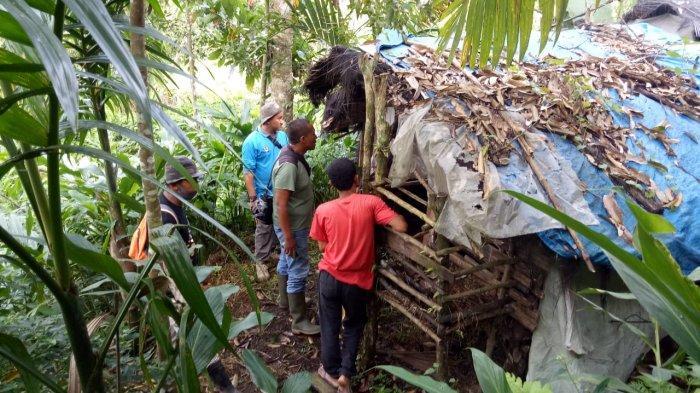 Sebanyak tiga ekor kambing milik warga ditemukan mati di Jorong Paraman, Nagari Sipinang, Kecamatan Palembayan, Kabupaten Agam, Sumatera Barat (Sumbar). Kambing warga tersebut ditemukan mati dalam keadaan penuh luka di bagian badannya pada Minggu, 16 November 2020.