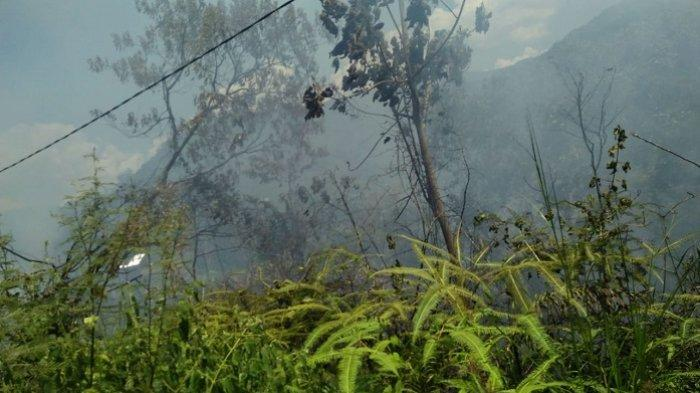 Selain di Teluk Bayur, Ada juga Kebakaran Lahan di Padang Hari Ini, Lokasinya Dekat Kolam ABG